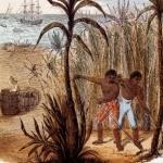 1764 – Sugar Act